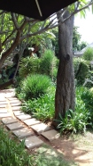 sirh-teagarden